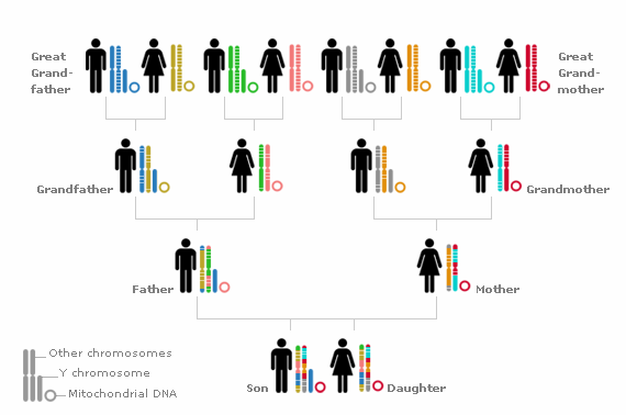 Genetic Genealogy – Its a Good Thing